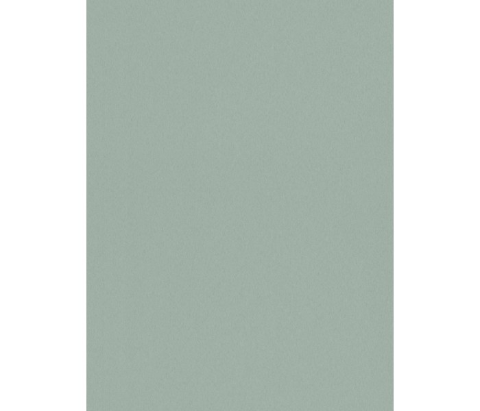 DW878863-54 AP 1000 Wallpaper, Decor: Uni