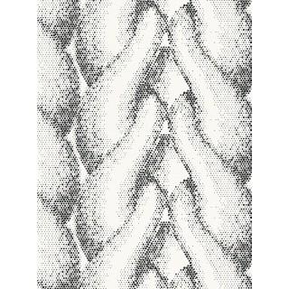 DW224943943 Matrics Wallpaper