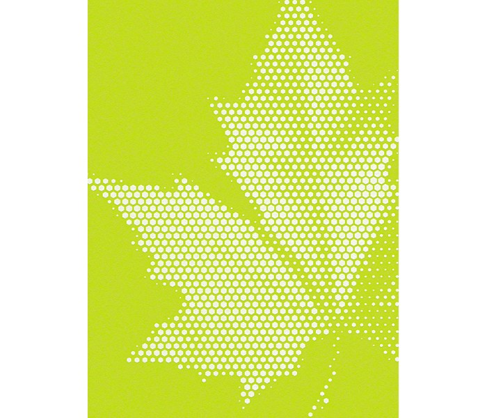 DW224944051 Matrics Wallpaper