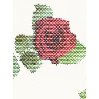 DW224944071 Matrics Wallpaper