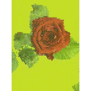 DW224944072 Matrics Wallpaper