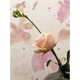 DW234952842 Daniel-Hechter-3 Wallpaper