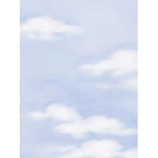 DW897981-21 Decora Natur 3 Wallpaper, Decor: Clouds,Sky