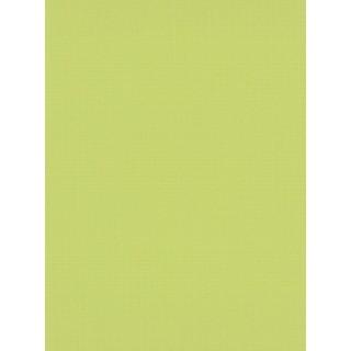 DW1066743-07 Green Urban Spirit Wallpaper