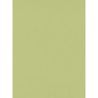 DW1076748-07 Green Plain Wallpaper
