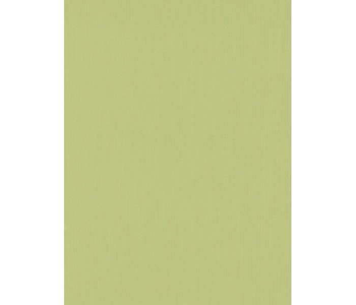 DW1076748-07 Green Plain Wallpaper