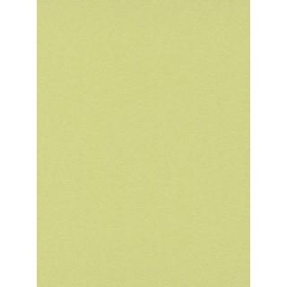 DW1076750-07 Green Plain Wallpaper