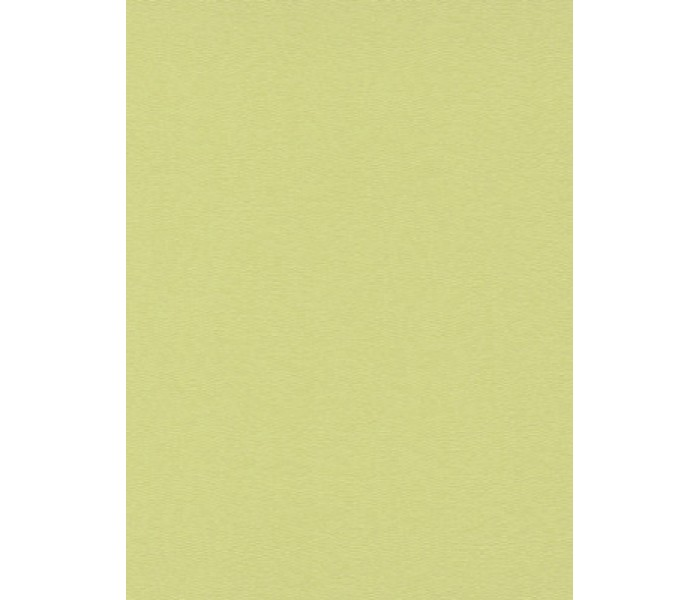 DW1076750-07 Green Plain Wallpaper