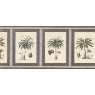 9 in x 15 ft Prepasted Wallpaper Borders - Palm Tree Wall Paper Border 5506272