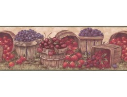 Fruits Wallpaper Border BP007171B