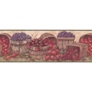 7 in x 15 ft Prepasted Wallpaper Borders - Fruits Wall Paper Border BP007171B