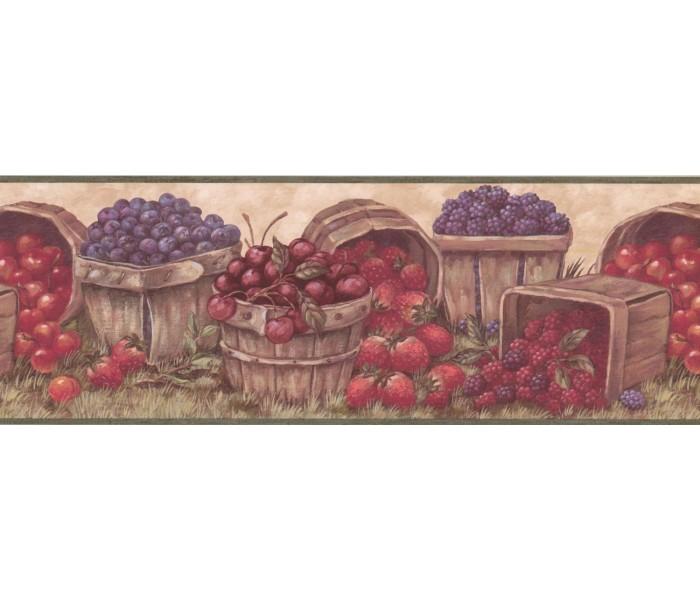 New  Arrivals Wall Borders: Fruits Wallpaper Border BP007171B