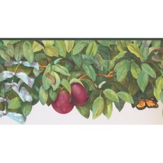10 1/2 in x 15 ft Prepasted Wallpaper Borders - Garden Wall Paper Border BS7700B