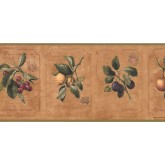 New  Arrivals Wall Borders: Kitchen Wallpaper Border DB3780B