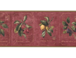 9 1/4 in x 15 ft Prepasted Wallpaper Borders - Fruits Wall Paper Border DB3781B