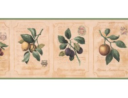 Prepasted Wallpaper Borders - Kitchen Wall Paper Border DB3783B