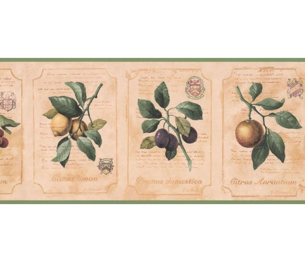New  Arrivals Wall Borders: Kitchen Wallpaper Border DB3783B