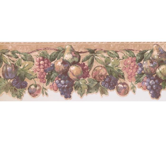 New  Arrivals Wall Borders: Fruits Wallpaper Border DES19504