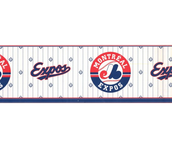 New  Arrivals Wall Borders: Baseball Wallpaper Border FP594307
