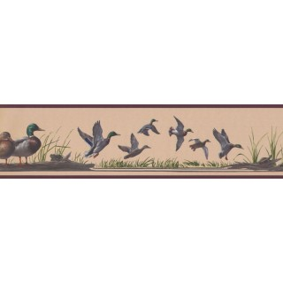 5 1/4 in x 15 ft Prepasted Wallpaper Borders - Birds Wall Paper Border HB741B