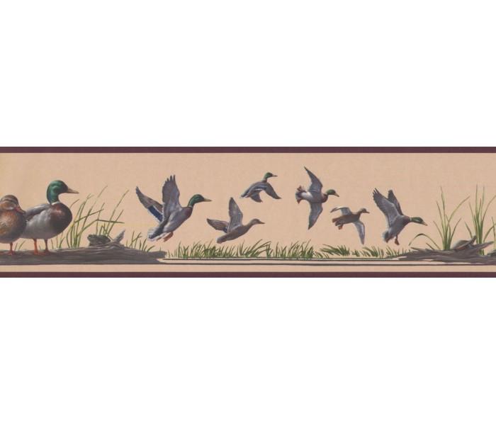 New  Arrivals Wall Borders: Birds Wallpaper Border HB741B