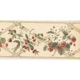 New  Arrivals Wall Borders: Fruits Wallpaper Border HS7877B