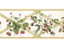 9 in x 15 ft Prepasted Wallpaper Borders - Fruits Wall Paper Border HS7879B