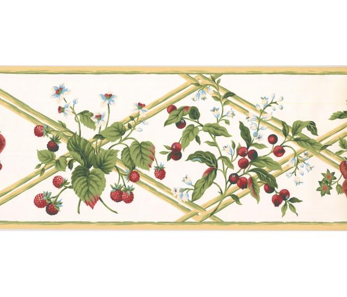 New  Arrivals Wall Borders: Fruits Wallpaper Border HS7879B