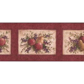 9 in x 15 ft Prepasted Wallpaper Borders - Fruits Wall Paper Border KM7867B
