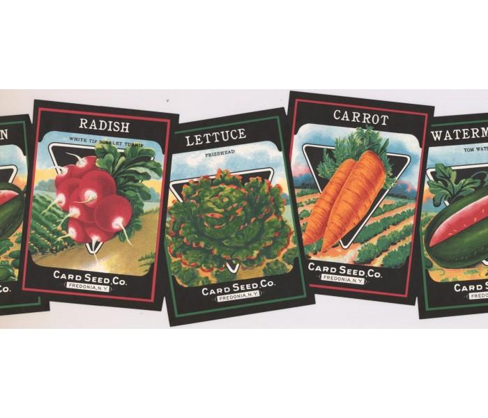 New  Arrivals Wall Borders: Vegetables Wallpaper Border KR2453B