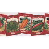New  Arrivals Wall Borders: Vegetables Wallpaper Border KR2455B