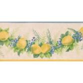 New  Arrivals Wall Borders: Fruits Wallpaper Border KT74984