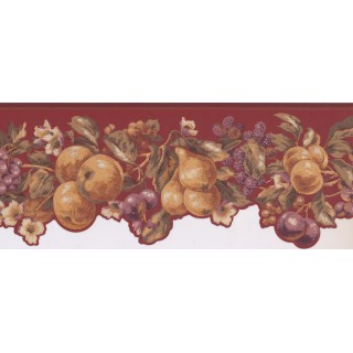 9 in x 15 ft Prepasted Wallpaper Borders - Fruits Wall Paper Border KT8324B