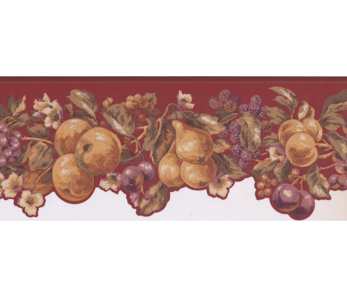 New  Arrivals Wall Borders: Fruits Wallpaper Border KT8324B