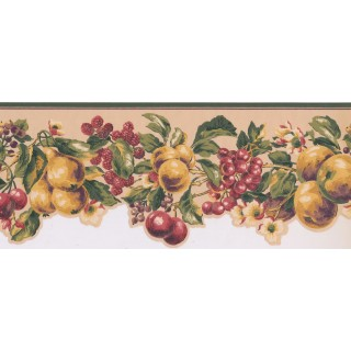 8 1/8 in x 15 ft Prepasted Wallpaper Borders - Fruits Wall Paper Border KT8325B