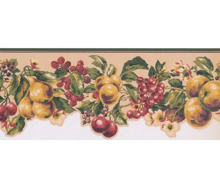 New  Arrivals Wall Borders: Fruits Wallpaper Border KT8325B