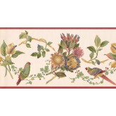 New  Arrivals Wall Borders: Birds Wallpaper Border LH2034B