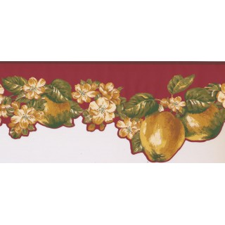 9 in x 15 ft Prepasted Wallpaper Borders - Fruits and Flower Wall Paper Border LT9463B