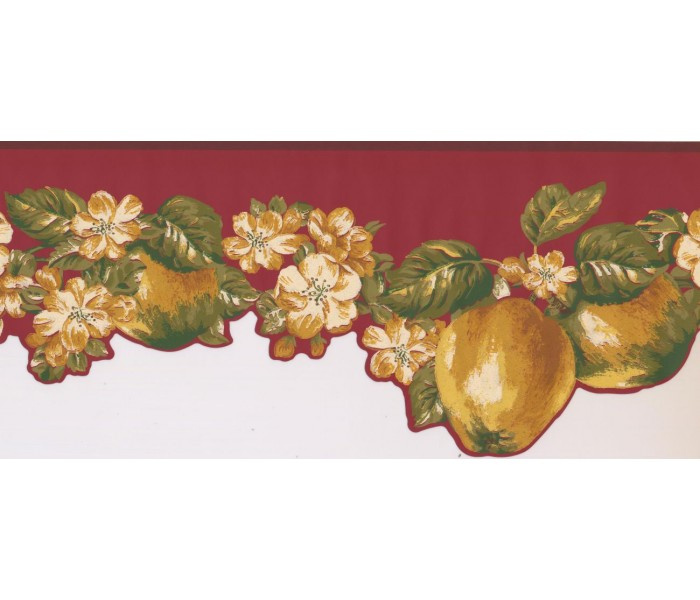 New  Arrivals Wall Borders: Fruits and Flower Wallpaper Border LT9463B