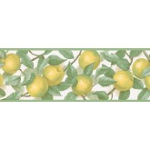 New  Arrivals Wall Borders: Fruits Wallpaper Border MK77657