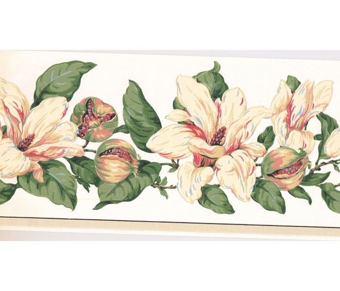 New  Arrivals Wall Borders: Floral Wallpaper Border MV2908B