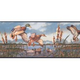 New Arrivals Birds Wallpaper Border NM6649B York