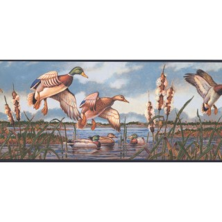 9 in x 15 ft Prepasted Wallpaper Borders - Birds Wall Paper Border NM6649B