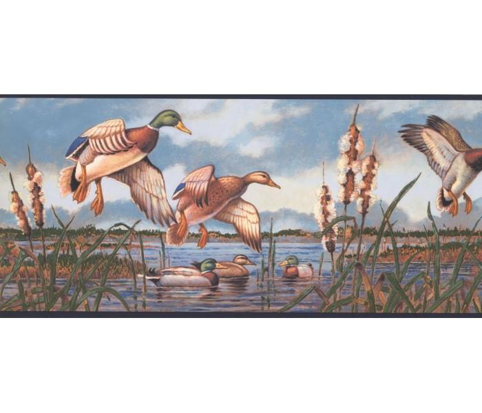 New  Arrivals Wall Borders: Birds Wallpaper Border NM6649B