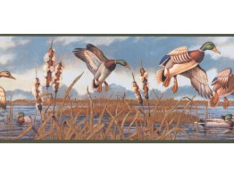 9 1/4 in x 15 ft Prepasted Wallpaper Borders - Birds Wall Paper Border NM6650B