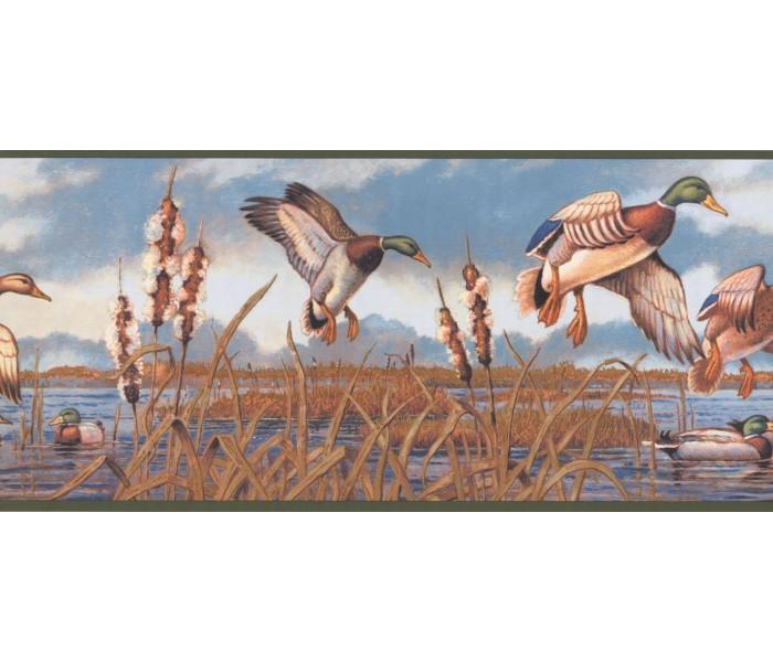 New  Arrivals Wall Borders: Birds Wallpaper Border NM6650B