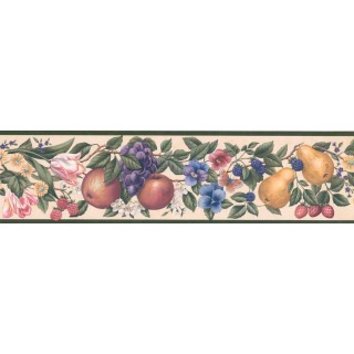 5 1/4 in x 15 ft Prepasted Wallpaper Borders - Fruits and Flower Wall Paper Border OS0716B