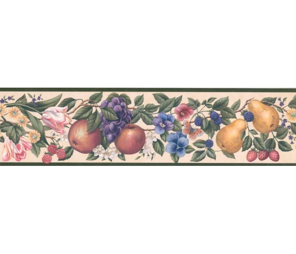 New  Arrivals Wall Borders: Fruits and Flower Wallpaper Border OS0716B