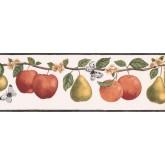 New  Arrivals Wall Borders: Fruits Wallpaper Border RC005112B