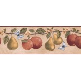 New  Arrivals Wall Borders: Fruits Wallpaper Border RC005113B